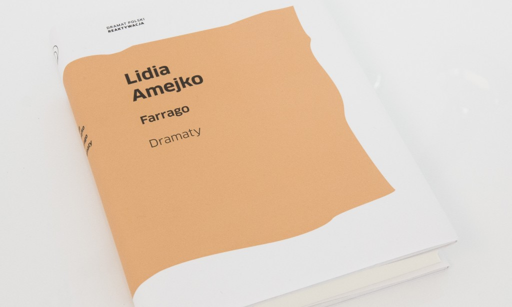 Lidia Amejko slajd